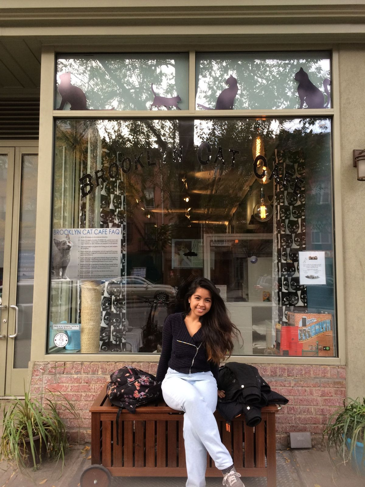 New York City: Cat Cafés